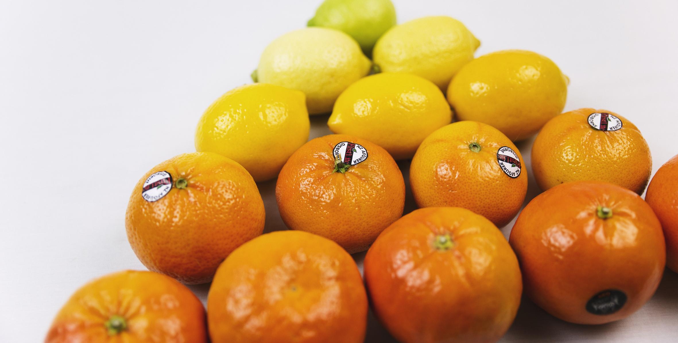 Zeafruit Citrus limes, lemons, mandarins, oranges, tangelos, and grapefruit