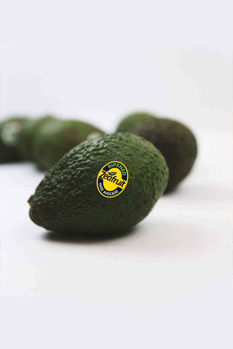 Zeafruit Avocado